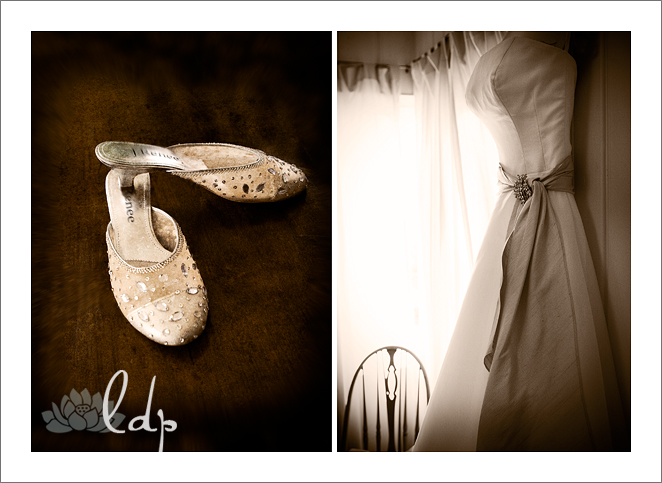 Dusttishoes and dress